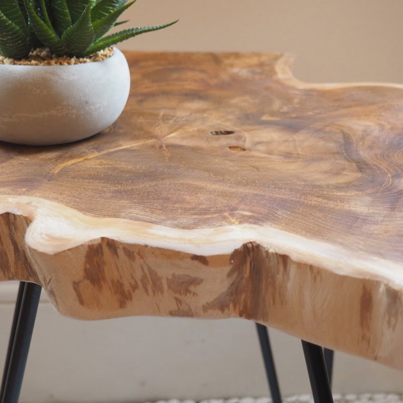 Wood Table Tree Wood Slice Coffee Table Za Za Homes
